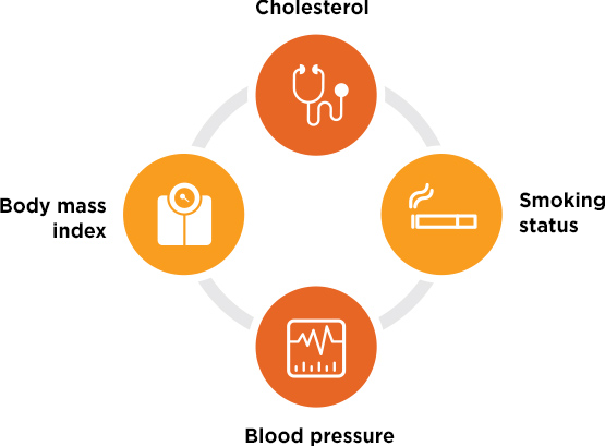 Image indicating that cholesterol, body mass index, smoking status and blood pressure are 4 key indicators of health.
