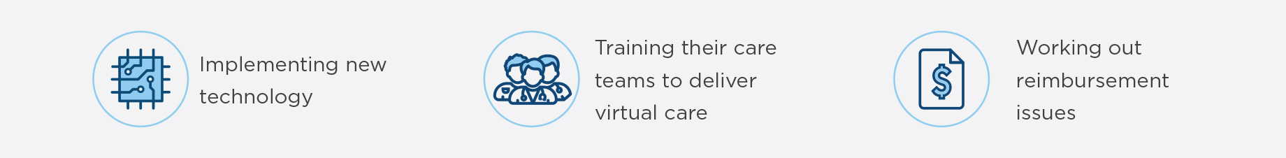Implementing new technology, training their care teams to deliver virtual care, and working out reimbursement issues.